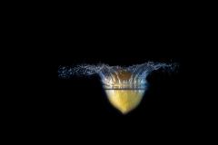 Splash-21